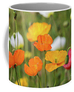 Coffee Mug featuring the photograph  Poppies 1 by Werner Padarin