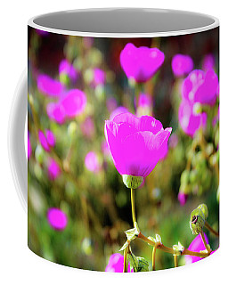 Coffee Mug featuring the photograph Poppies by Alison Frank