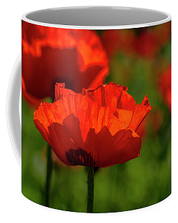 Poppies In A Meadow Coffee Mug