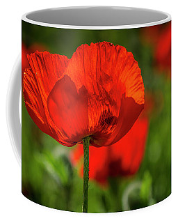Poppies In The Field Coffee Mug