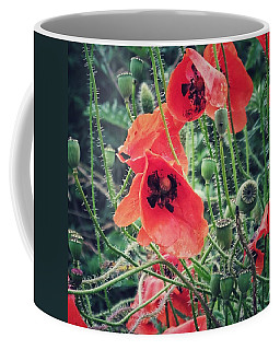 Poppies Coffee Mug by Karen Stahlros