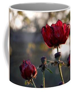 Poppy 2 Of 3 2017 Coffee Mug