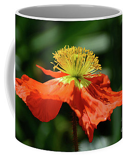 Poppy In Orange Coffee Mug by Cindy Manero