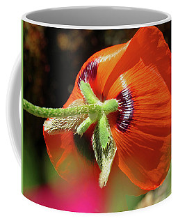 Poppy Magic - Images From The Garden Coffee Mug
