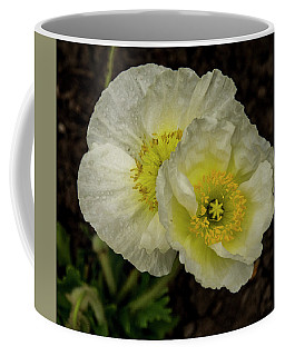 Coffee Mug featuring the photograph Poppy Pair by Jean Noren