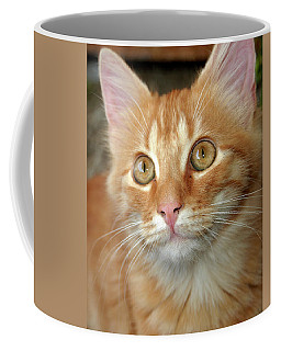 Portrait Of A Cat Coffee Mug
