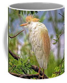 Portrait Of A Cattle Egret Coffee Mug