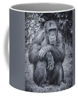 Portrait Of A Chimp Coffee Mug