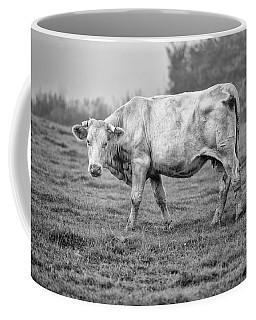 Portrait Of A Cow Coffee Mug