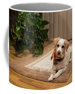 Portrait Of A Dog Coffee Mug