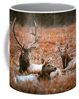 Portrait Of A Elk Family Coffee Mug