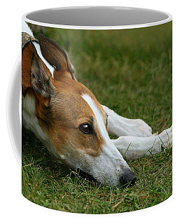 Coffee Mug featuring the photograph Portrait Of A Greyhound - Soulful by Angela Rath