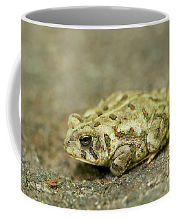 Portrait Of A Grumpy Toad - Fowler's Toad Coffee Mug
