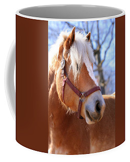 Coffee Mug featuring the photograph Portrait Of A Haflinger - Niko by Angela Rath