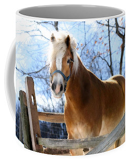 Coffee Mug featuring the photograph Portrait Of A Haflinger - Niko In Winter by Angela Rath