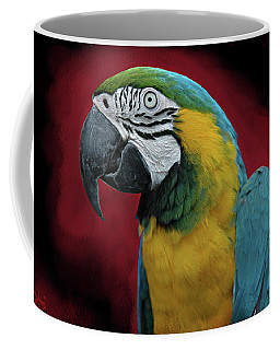 Coffee Mug featuring the photograph Portrait Of A Parrot by Jeff Burgess