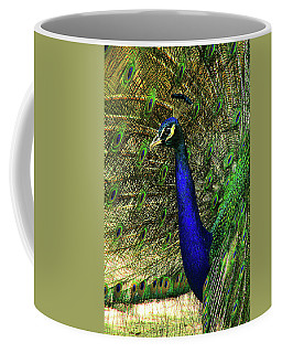 Coffee Mug featuring the photograph Portrait Of A Peacock by Jessica Brawley