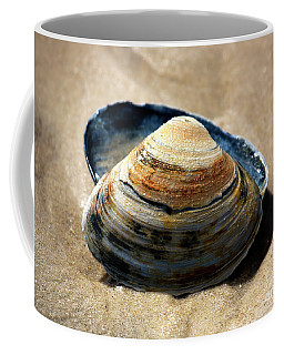 Coffee Mug featuring the photograph Portrait Of A Seashell by John Rizzuto