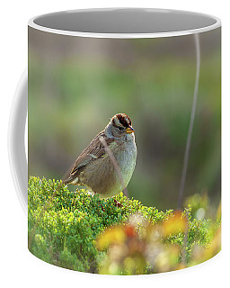 Portrait Of A Sparrow Coffee Mug by Jonathan Nguyen