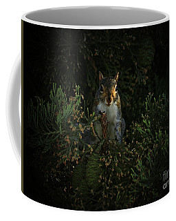 Portrait Of A Squirrel Coffee Mug