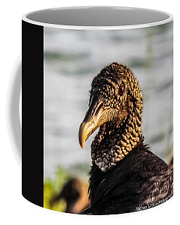 Portrait Of A Vulture Coffee Mug