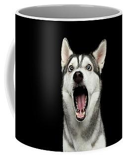 Portrait Of Amazement Siberian Husky Coffee Mug