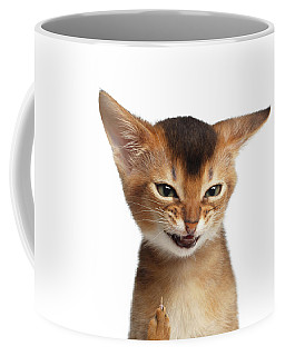 Portrait Of Kitten With Showing Middle Finger Coffee Mug