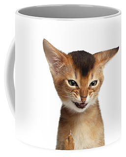 Coffee Mug featuring the photograph Portrait Of Kitten With Showing Middle Finger by Sergey Taran