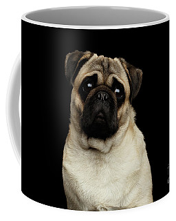 Portrait Of Pug Coffee Mug