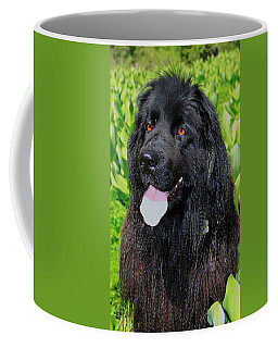 Portrait Of Sierra Coffee Mug