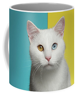 Coffee Mug featuring the photograph Portrait Of White Cat On Blue And Yellow Background by Sergey Taran