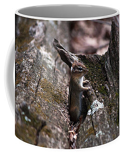Coffee Mug featuring the photograph Posing #1 by Jeff Severson