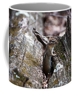 Coffee Mug featuring the photograph Posing #2 by Jeff Severson