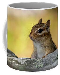 Posing Chipmunk Coffee Mug