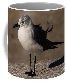 Posing Laughing Gull Coffee Mug