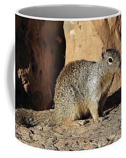Posing Squirrel Coffee Mug
