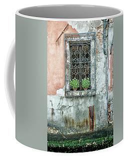 Pot Plant Window Coffee Mug