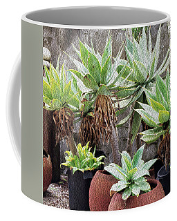 Potted Agave Plants Coffee Mug