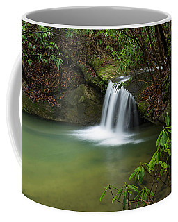 Pounder Branch Falls # 2 Coffee Mug by Ulrich Burkhalter