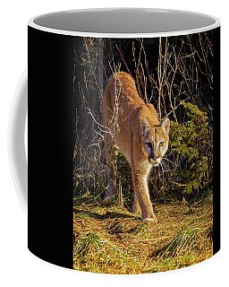 Coffee Mug featuring the photograph Power And Grace by Jack Bell