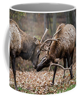 Coffee Mug featuring the photograph Practicing by Andrea Silies