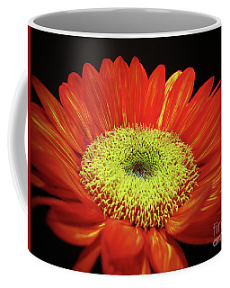 Prado Red Sunflower Coffee Mug