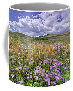 Coffee Mug featuring the photograph Prairie Blooms by Jack Bell