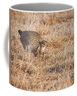 Coffee Mug featuring the photograph Prairie Chicken 11-2015 by Thomas Young