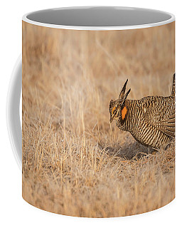 Coffee Mug featuring the photograph Prairie Chicken 8-2015 by Thomas Young
