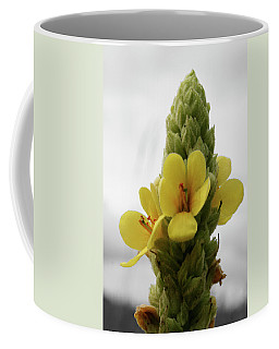 Coffee Mug featuring the photograph Prairie Cone by Dylan Punke