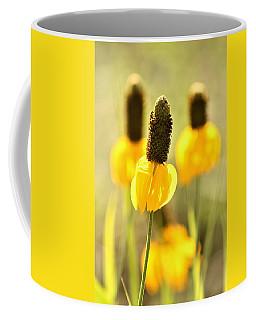 Prairie Coneflower In Morning Light Coffee Mug