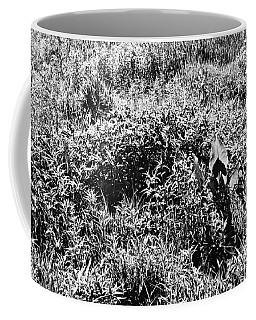 Prairie Sun Coffee Mug