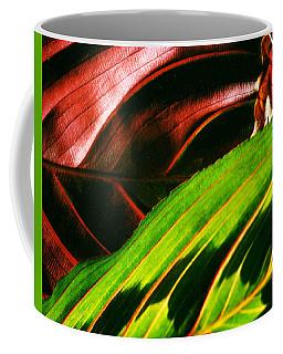 Prayer Plant Passing Coffee Mug