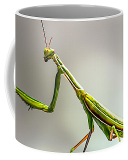 Coffee Mug featuring the photograph Praying Mantis  by Bob Orsillo